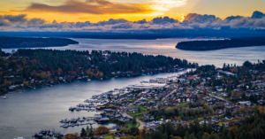 Greater Seattle, WA Oral Medicine Practice for Sale